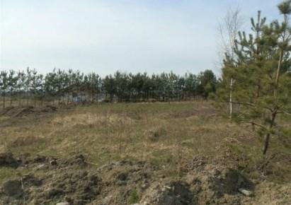 działka na sprzedaż - Sicienko, Dąbrówka Nowa